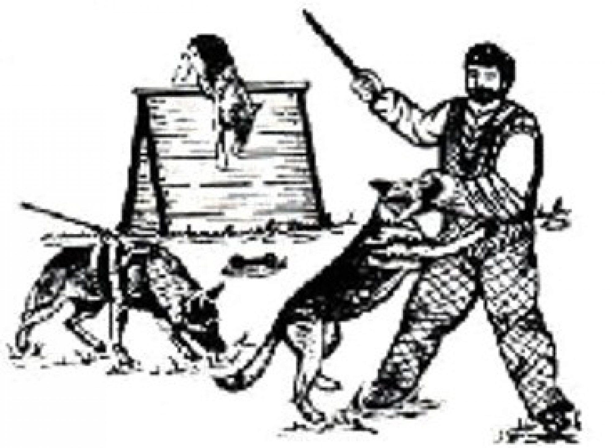 schaeferhund-herbede
